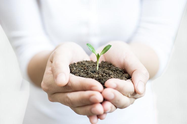 Green Change Leader Program